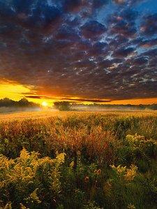 horizons sunrise-horizon-phil-koch