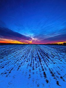 horizons twilight-rows-phil-koch