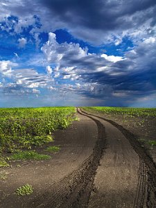 horizon -road-phil-koch