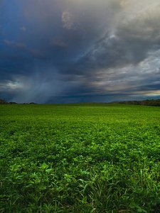 horizons showers-phil-koch