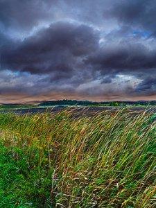 horizons summer-storms-phil-koch