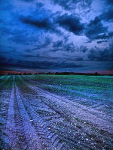 horizons the-blues-phil-koch