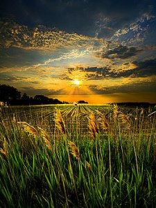horizons glory-phil-koch