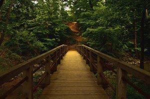 Horizon bridged-path-phil-koch