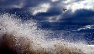 Horizons fly-by-phil-koch