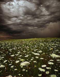 Horizons 2-summer-storms-phil-koch