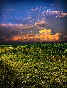 horizons cumulus-nimbus-phil-koch