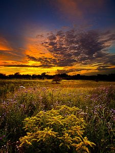 horizons destination-phil-koch