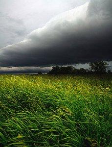 Horizons june-winds-phil-koch