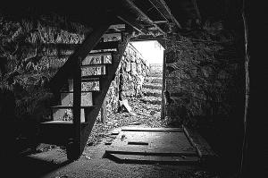 horizons-the-cellar-phil-koch