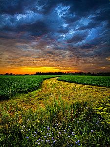 horizons-a-long-walk-phil-koch