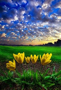 horizons-what-kind-of-world-do-you-want-phil-koch
