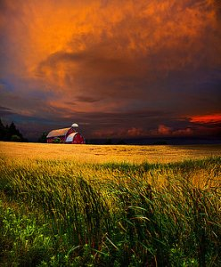horizons-2-homestead-phil-koch