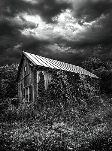 horizons-hereafter-phil-koch
