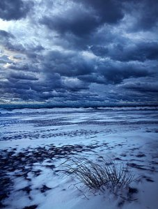 horizon-barren-phil-koch