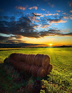horizons-1-harvest-phil-koch