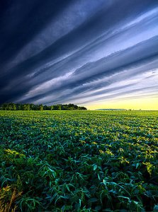 horizons-crossing-over-phil-koch