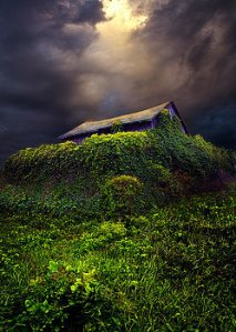 horizons-forgotten-phil-koch