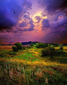 horizons-secluded-dream-phil-koch