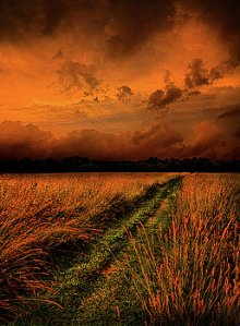 horizons-the-path-to-reclusivity-phil-koch
