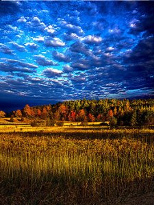 horizons-distant-color-phil-koch