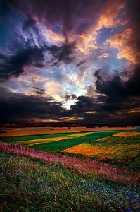 horizons-echos-of-life-phil-koch