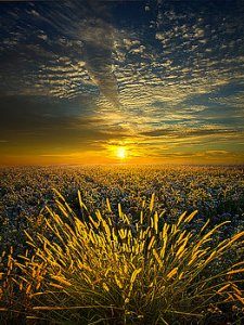 horizons-rural-choir-phil-koch