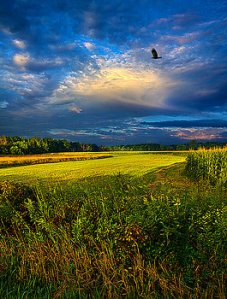 horizons-time-flies-phil-koch