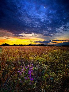 horizons-return-to-bonnies-meadow-phil-koch