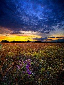 horizons-return-to-bonnies-meadow-phil-koch